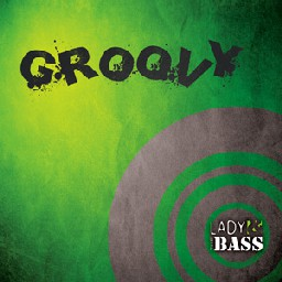 Descrizione: Lady_and_the_BASS_groovy