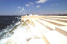 SEA-ORGAN.jpg